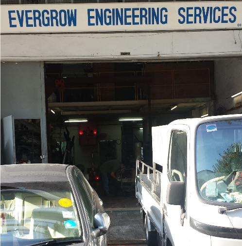 about evergrow